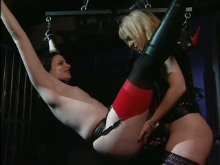 Submissive Deviant Floozy Claire Adams acquires Headed Up and Harrowing